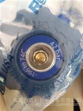 成彰 天然气车气瓶ROGO力高气瓶阀门 截止阀 两边带管42bar/ROGO力高42bar