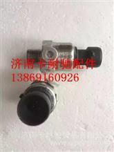南充天然气发动机电子气量压力传感器/YP4033K-20MPa