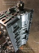 潍柴 重汽汽缸体/电喷 大泵