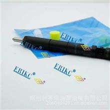 ERIKC艾瑞克EJBR01701Z德尔福油嘴ejbr01701高压共轨喷油器/EJBR01701Z