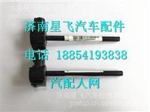 中国重汽豪沃A7水位传感器总成 WG9925530012/ WG9925530012
