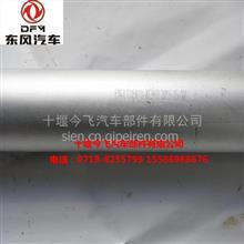 供应东风天龙大力神消声器前进气管总成 / 1203010-KC9H2