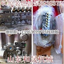 山推SD22燃油泵4061206-20【PT系列】NTA855总成/价格4061206