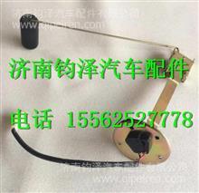1B20037603001福田瑞沃燃油传感器油浮子/1B20037603001