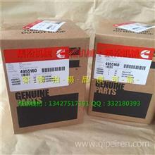 供应康明斯QSB4.5四配套4955160/活塞环/QSB4.5