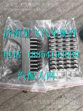重汽豪翰暖风电阻 DS490 64521/ DS490 64521