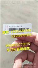 WG1671770075  重汽豪瀚新款N7 车门补盲镜总成/WG1671770075
