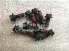 东风康明斯6CT 6L ISB3.9发动机齿轮室螺丝(2.8*2.0*0.8)/C3926846