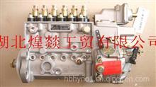 厂家直销东风康明斯工程机械发动机柴油燃油泵总成 C4938265/4938265