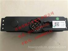 重汽豪沃轻卡配件控制器总成(电动)(R)/LG1616820300