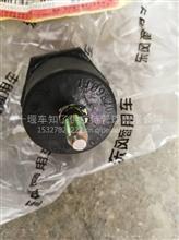 东风天龙旗舰支架总成-进气引入管,带橡胶/1109820-C6100