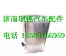WG925550300重汽斯太尔王油箱/WG925550300