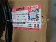 东风天锦油泵带拉丝总成/5005010-C1110