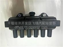 供应雷竞技EQ6100电喷点火线圈 GQD691/GQD691