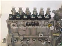 康机 L8.9 发动机燃油泵 /5264269