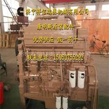 康明斯凸轮轴 KTA19-M发动机 平垫圈127362/平垫圈127362 船用发动机大修备件