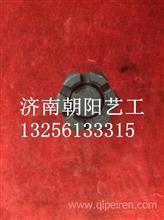 AZ1651430207重汽豪沃70矿山霸王前翻转螺丝/AZ1651430207