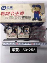 华菱重卡/50X252