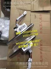 WG9925720036/0037  重汽豪瀚N7 后示廓灯(左 右)/WG9925720036/0037