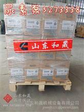 SCR尿素泵5303018FR 5273338 ISG康明斯供应商/5303018FR