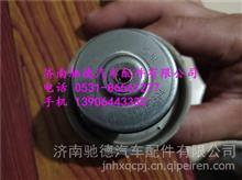 陕汽欧曼潍柴发动机潍柴P12节温器总成节温器芯71度76度79度83度/61800060172