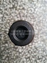 东风汽车螺丝汽车型号螺丝厂家直销/3104051-FQ63P