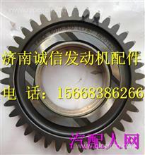 1006060-81D一汽锡柴81D正时中间齿轮/1006060-81D