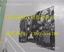 DZ15221620010陕汽德龙新M3000前地板垫/DZ15221620010