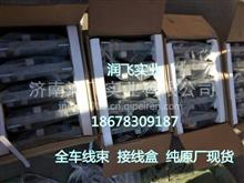 供应陕汽重卡卡车配件 汽车线束 重汽豪沃卡车配件 汽车线束 原厂/18678309187