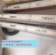 3066877凸轮轴康明斯k19-c525凸轮轴三一矿用车STR55C/3066877
