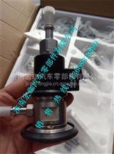 重汽豪沃A7欧四发动机尿素喷嘴总成/WG1034121002