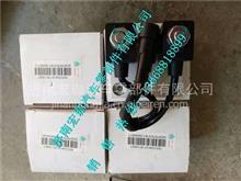 WG1034121181+002重汽豪沃尿素泵集成系统电磁阀