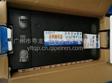 200A蓄电池免维护/6-QW-326(900)