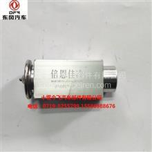 供应东风天锦空调膨胀阀 -小孔/ 8106ST-010