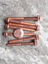 东风雷诺排气歧管螺栓/纯铜/专用D5000694330/D5000694330
