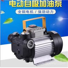 CB6H925型号加 油泵 液压泵 水泵 喷射泵AC220V/550W AC220V/750W/CB6H925