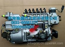 重汽发动机豪沃HOWO高压油泵总成大泵燃油喷射泵/336马力油泵/VG1095080100