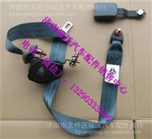 重汽豪沃A7驾驶室安全带/WG1664560010