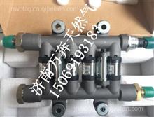 玉柴天然气发动机喷轨燃油喷射泵 OH6系统天然气/OH2.0系统天然气 LN200-1113900B