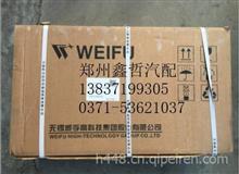 潍柴WP10.336NE31高压油泵无锡威孚612601080386/612601080386