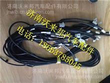 LG9704770006重汽豪沃HOWO轻卡地板线束/LG9704770006
