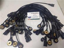 爆震传感器 震爆传感器 0261231218