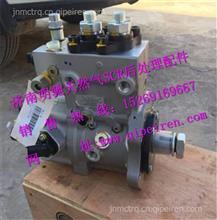 13024963  612600080674 潍柴国三蓝擎电喷油泵/13024963  612600080674