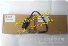 0258007206博世BOSCH氧传感器/0258007206