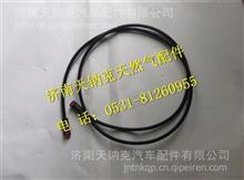 东风商用车尿素管总成-计量泵至尿素罐/1205802-KW200