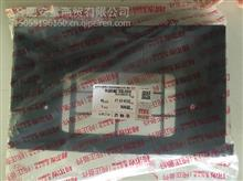 JAC江淮格尔发亮剑重卡货车配件过滤芯壳体总成/8113100G1P10