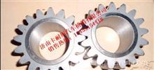 TZ56077000147重汽豪威60矿大江迈克桥行星齿轮/TZ56077000147
