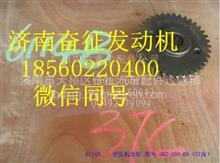 D07-104-03上柴D6114空压机齿轮/D07-104-03
