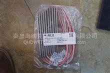 维克托供应美国MINCO热电阻/S853PD55Z6