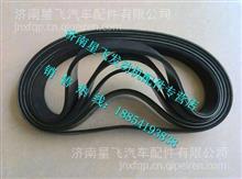 612600061360潍柴动力WP10专用多楔带皮带/612600061360
